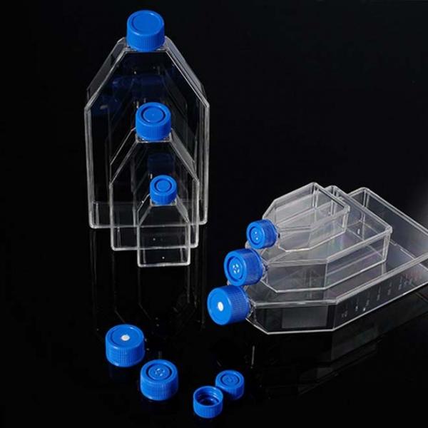 Zell- und Gewebekulturflasche