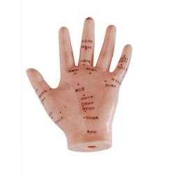 Handakupunkturmodell 13cm